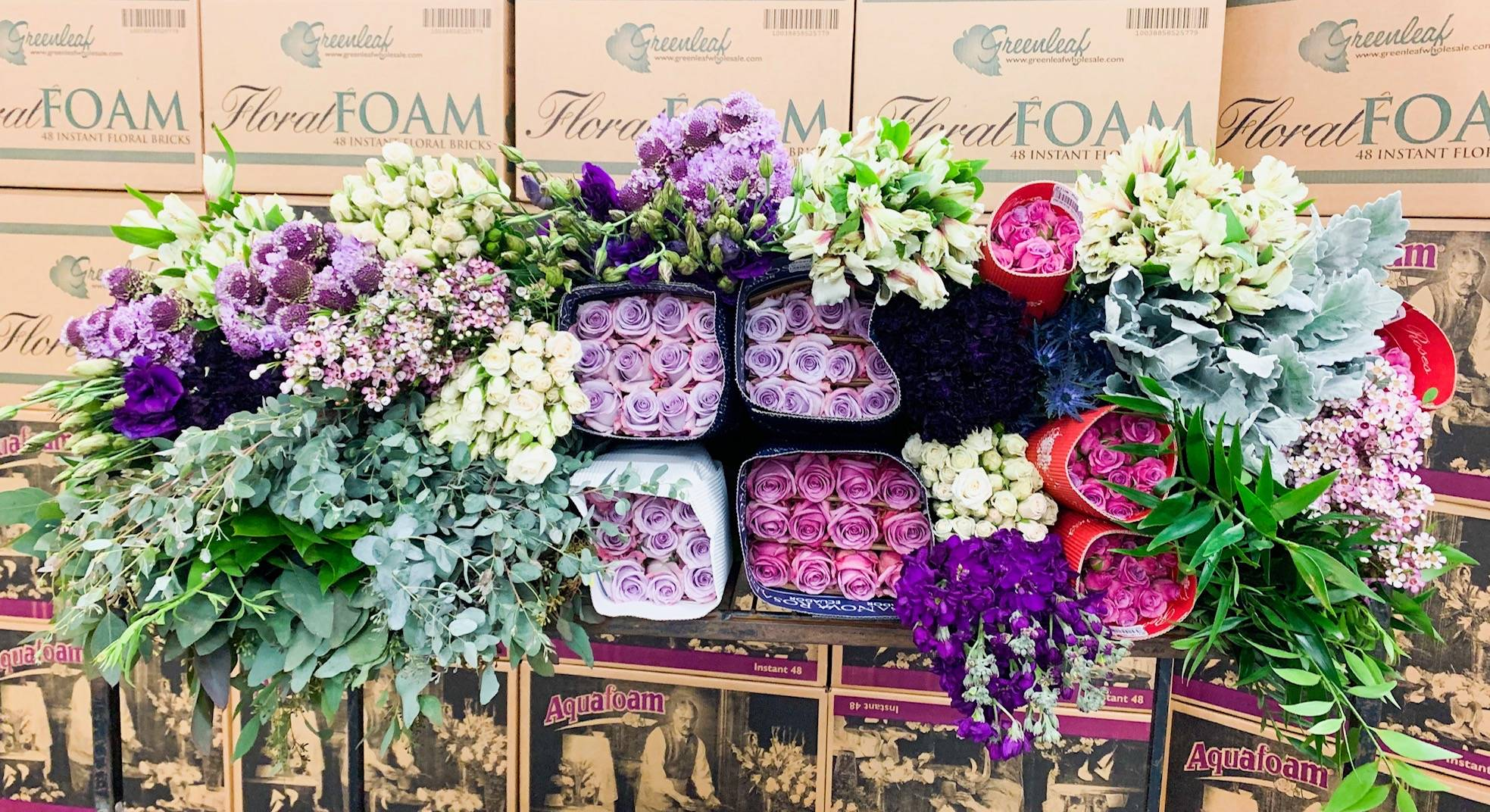 Ocean song, Cool water roses, lavender scabiosa, burgundy scabiosa, purple stock, dusty miller