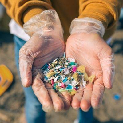 Hands wearing clear plastic gloves holding microplastic pieces found on the beach