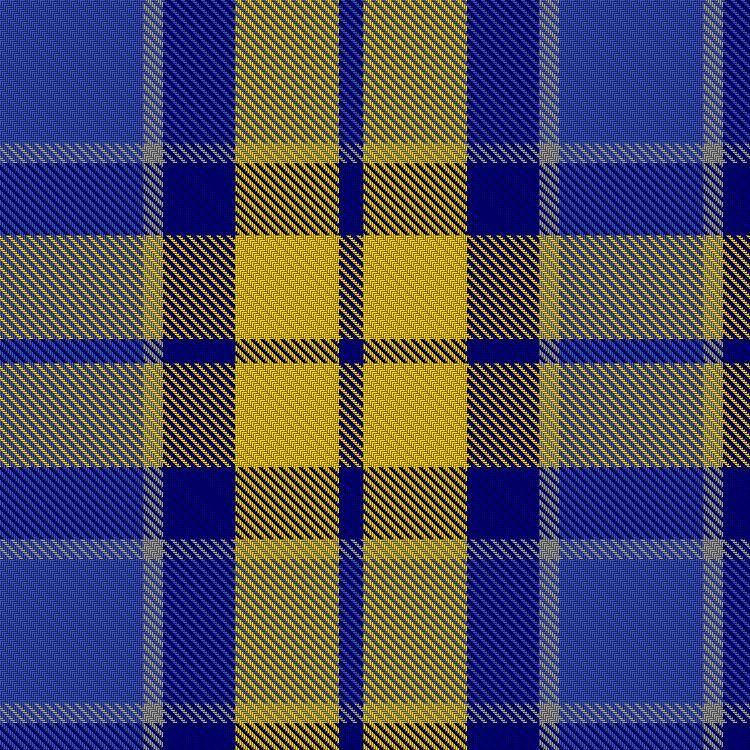 Chief Executives Organisation (CEO) tartan