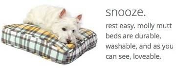 comforting dog beds