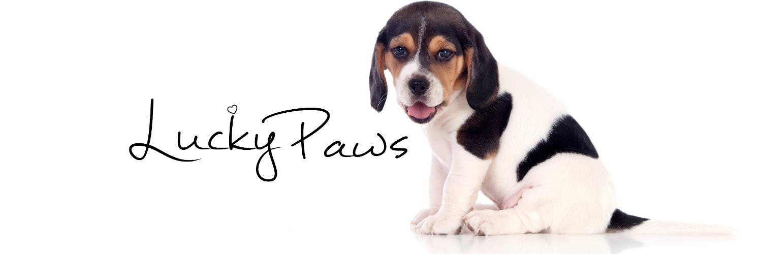 pawpy kisses lucky paws image
