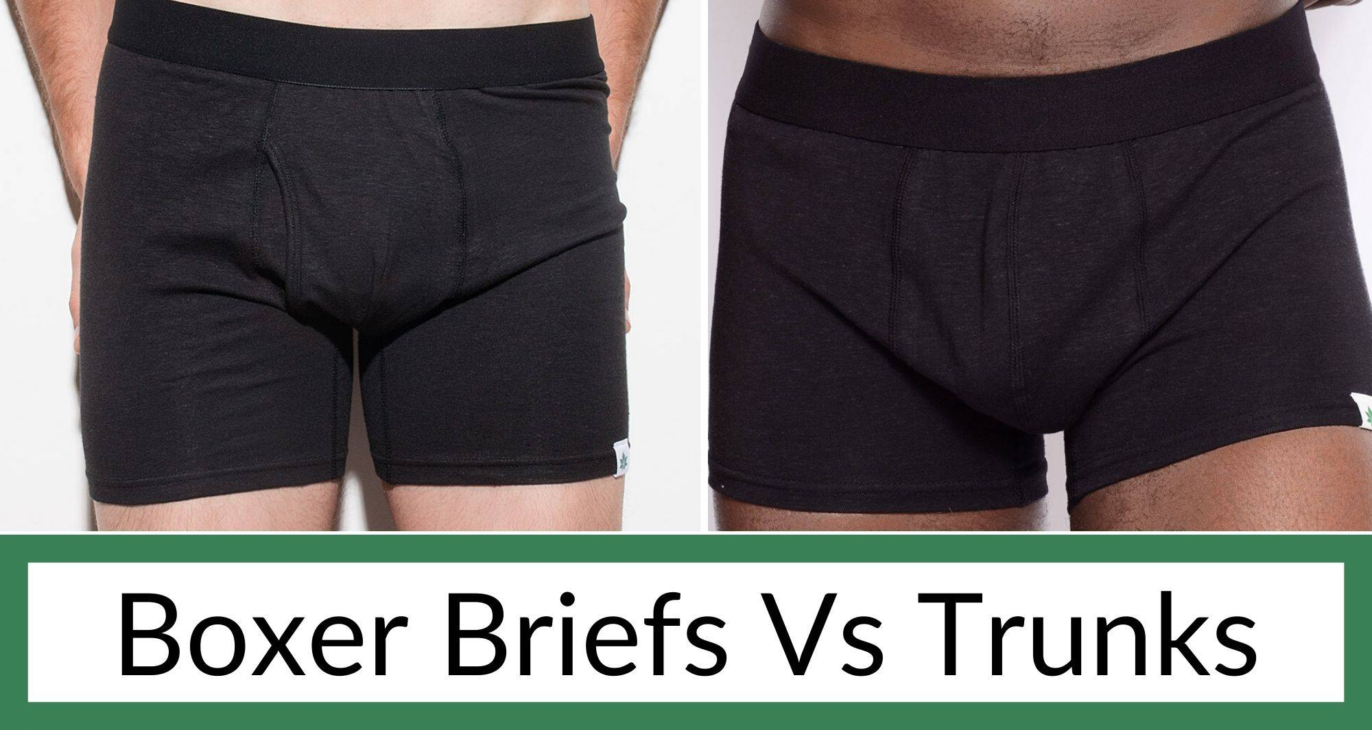 Men wearing boxer briefs and trunks by WAMA Underwear