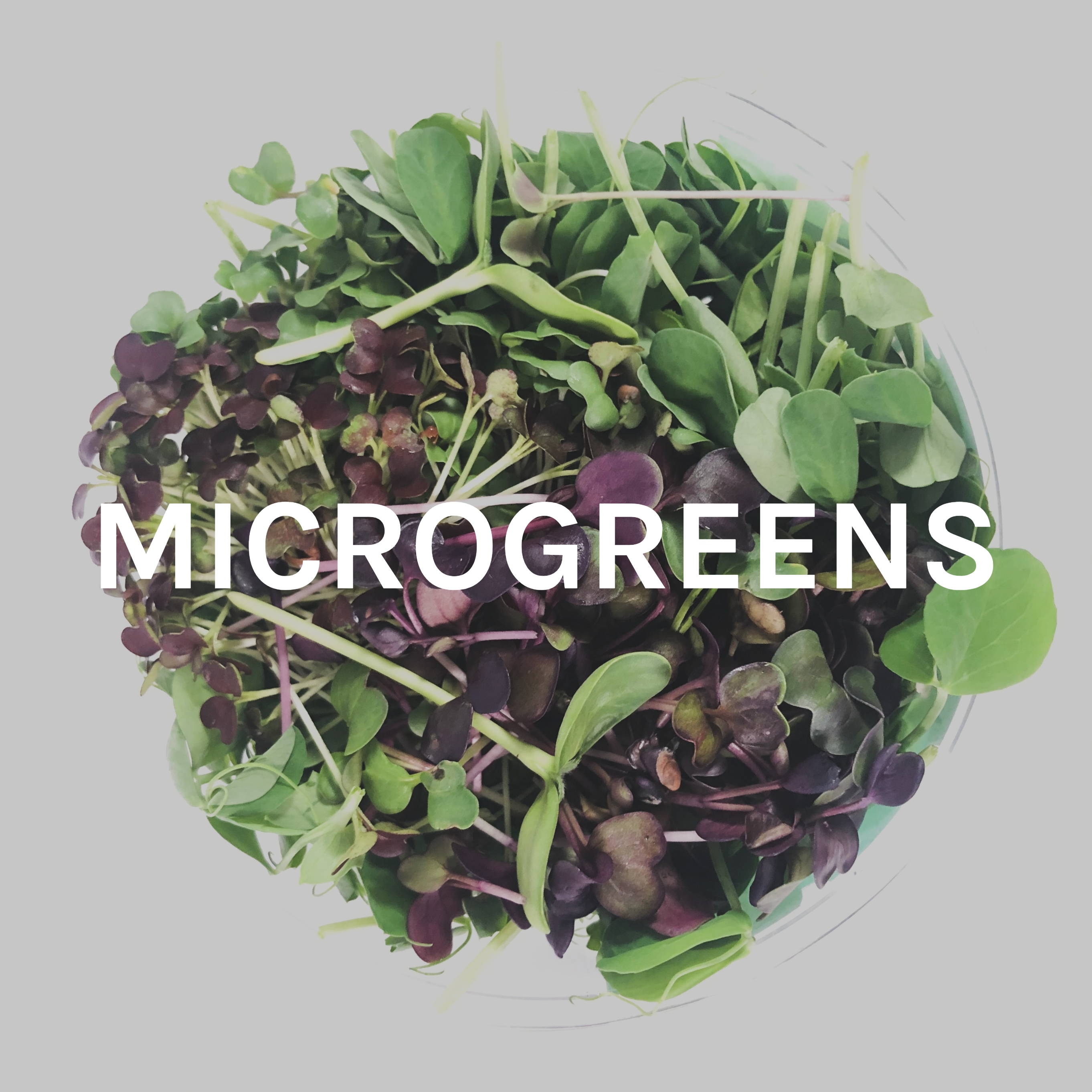 Microgreens Collection