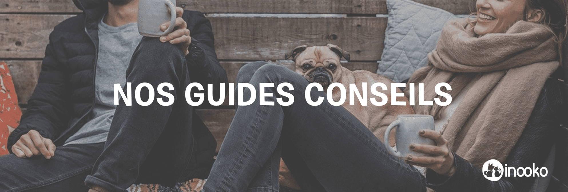 Banner_guide_achats_conseils_comportement_animal_meilleurs accessoires_chien_chat