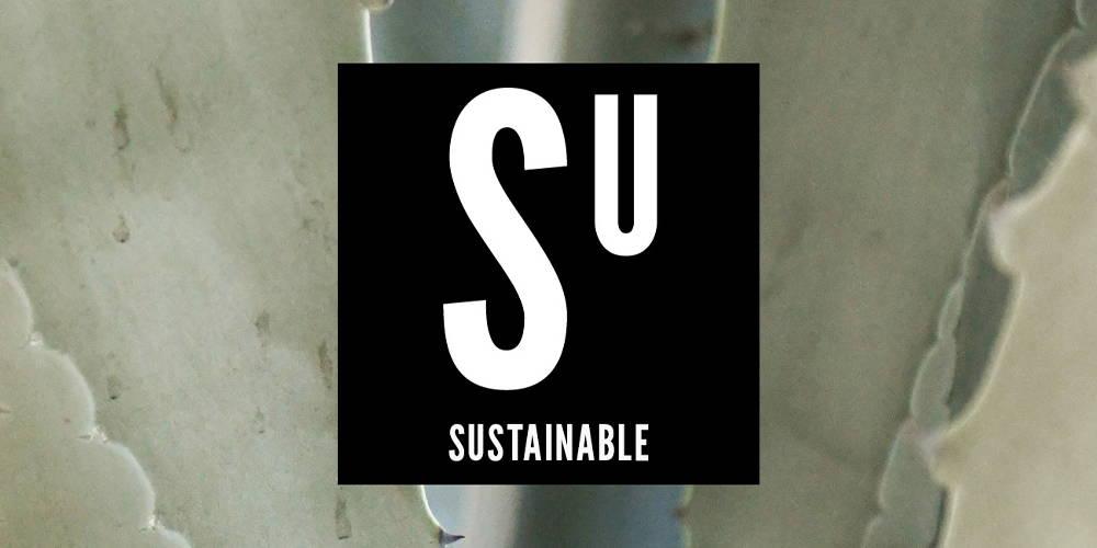 Stride Values | Sustainabl
