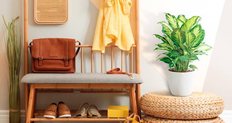 Változtassa zölddé az összes helyiséget otthonában