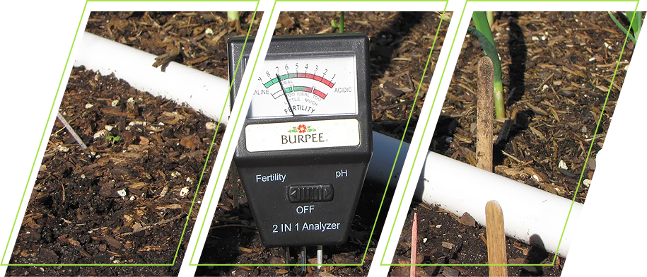 Reasons Why Soil Testing is an Essential Part of Gardening