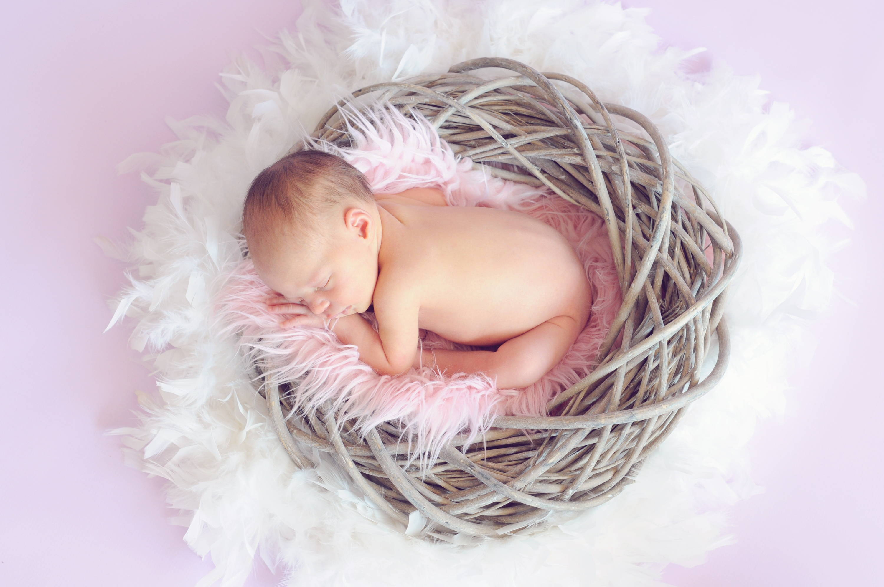 7  Tips for Posing your Newborn