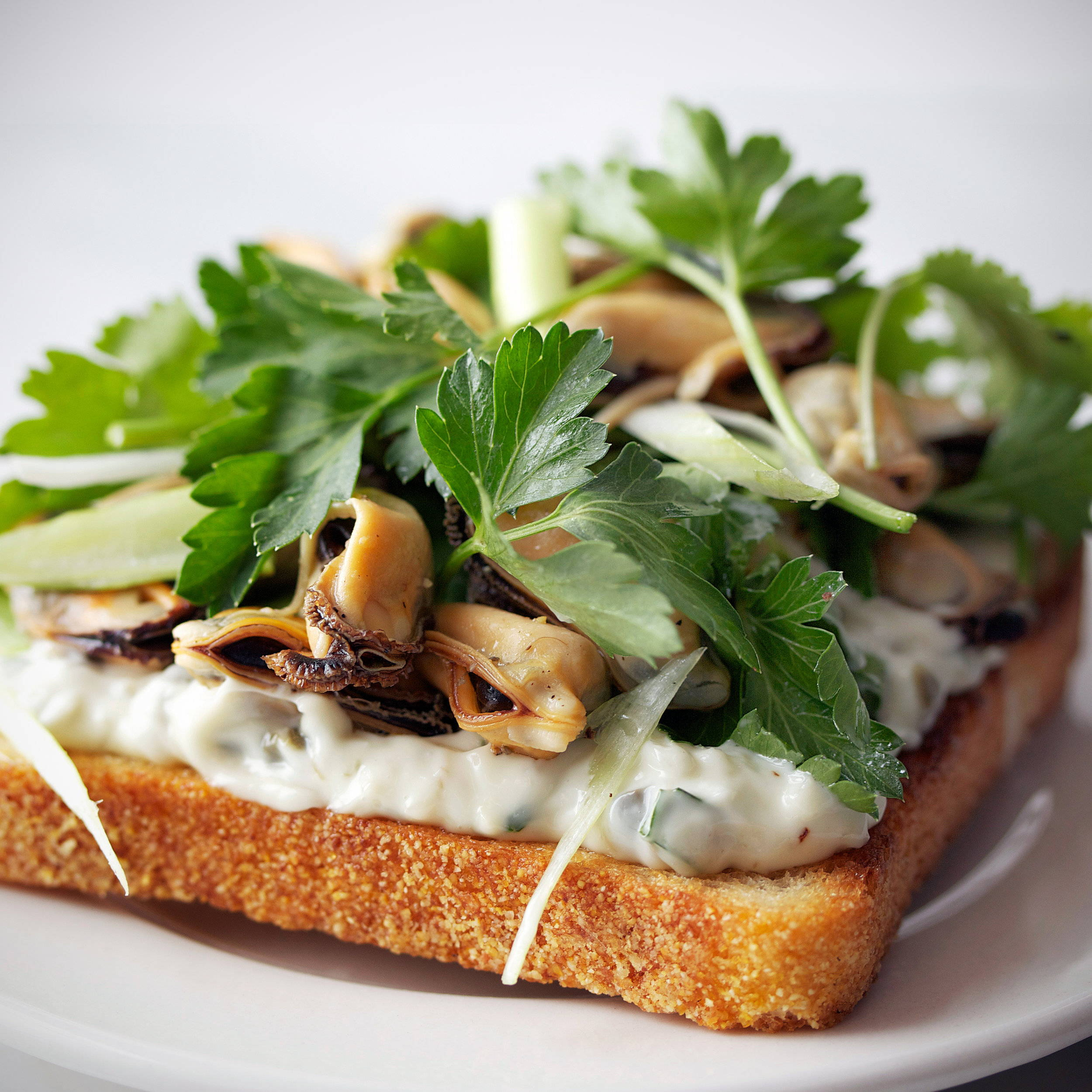 Herb infused butter on a delicious sandwich