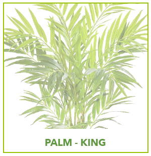ARTIFICIAL KING PALM PLANTS