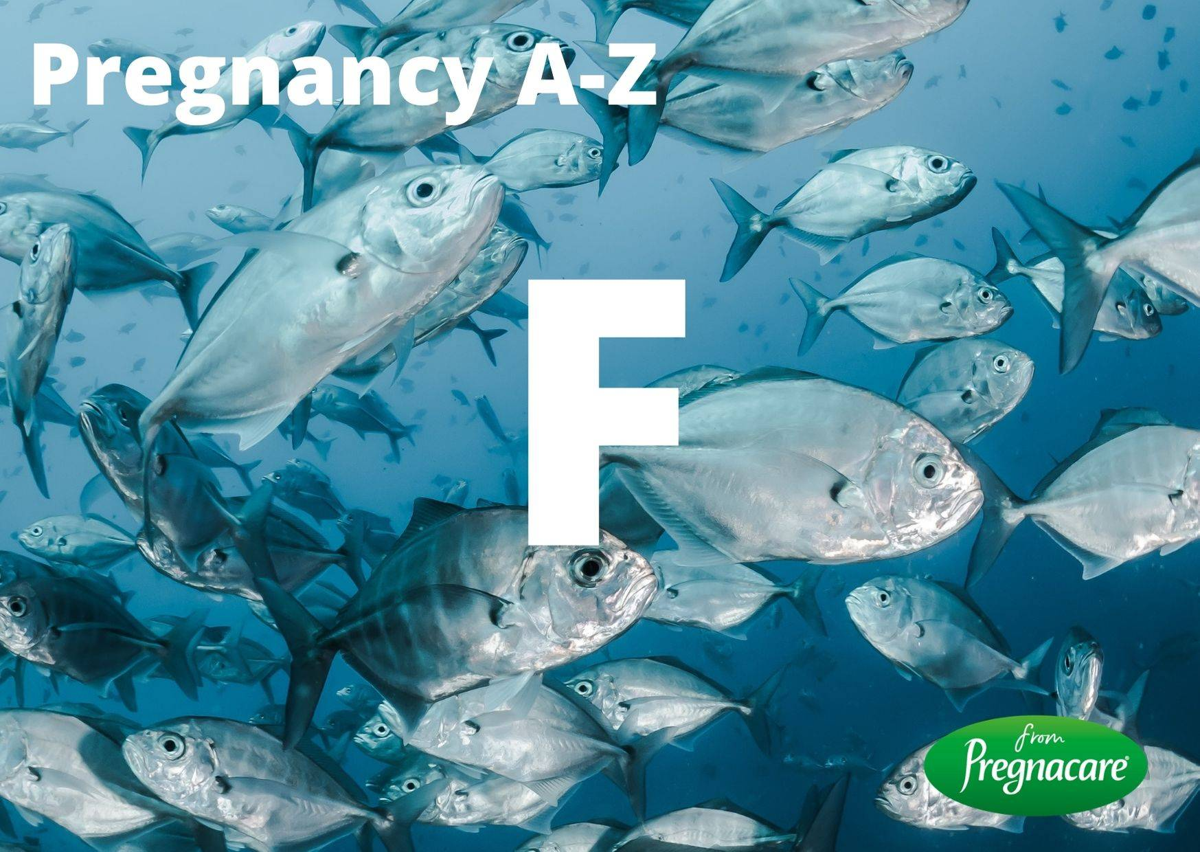 F Letter With Fish Background