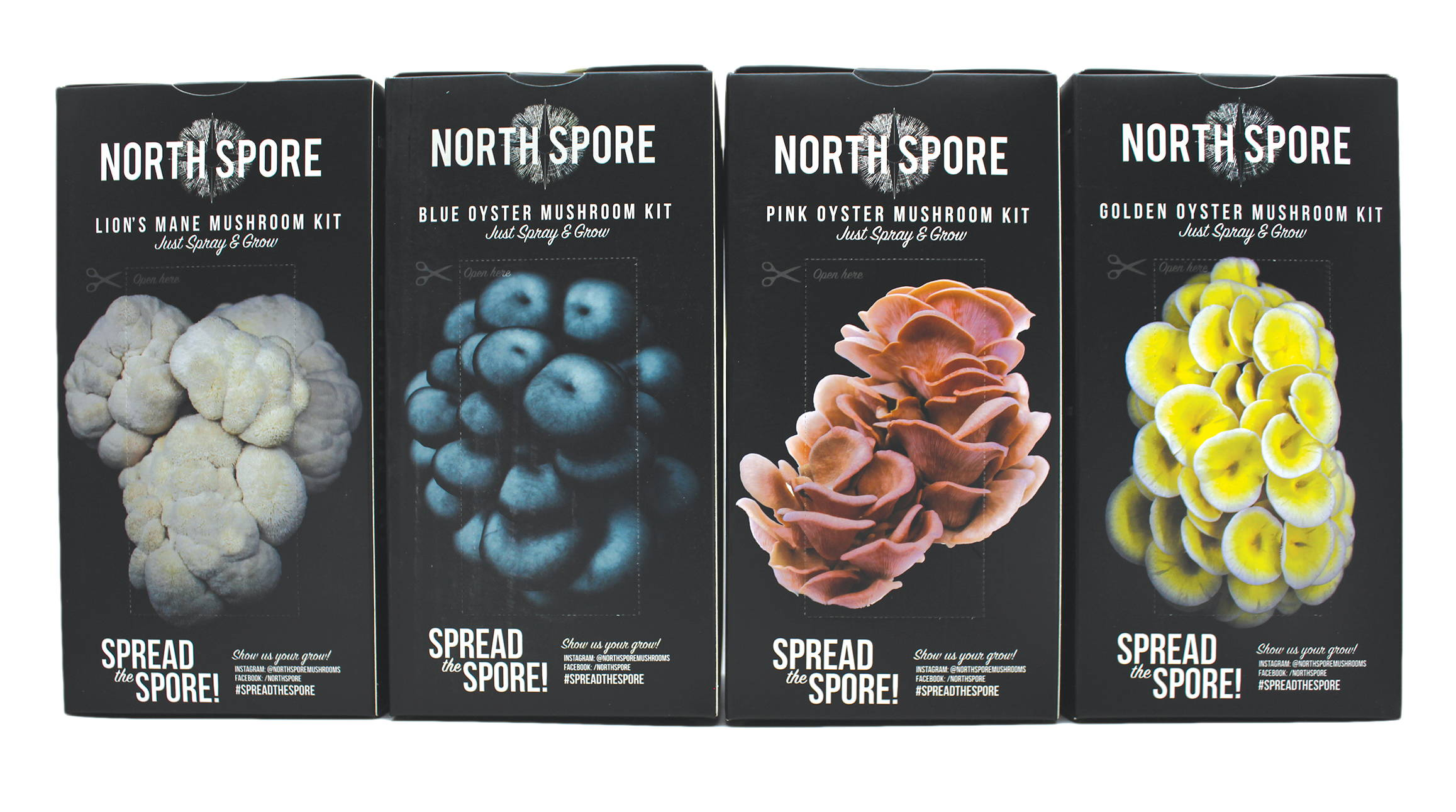 spray and grow mushroom kits