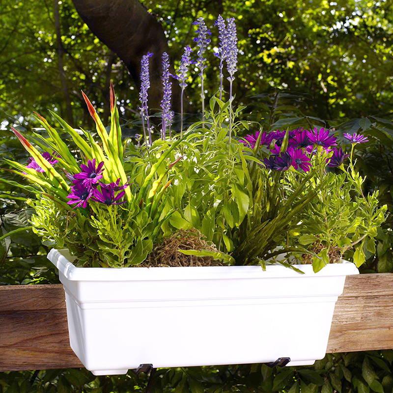 White countryside flower box