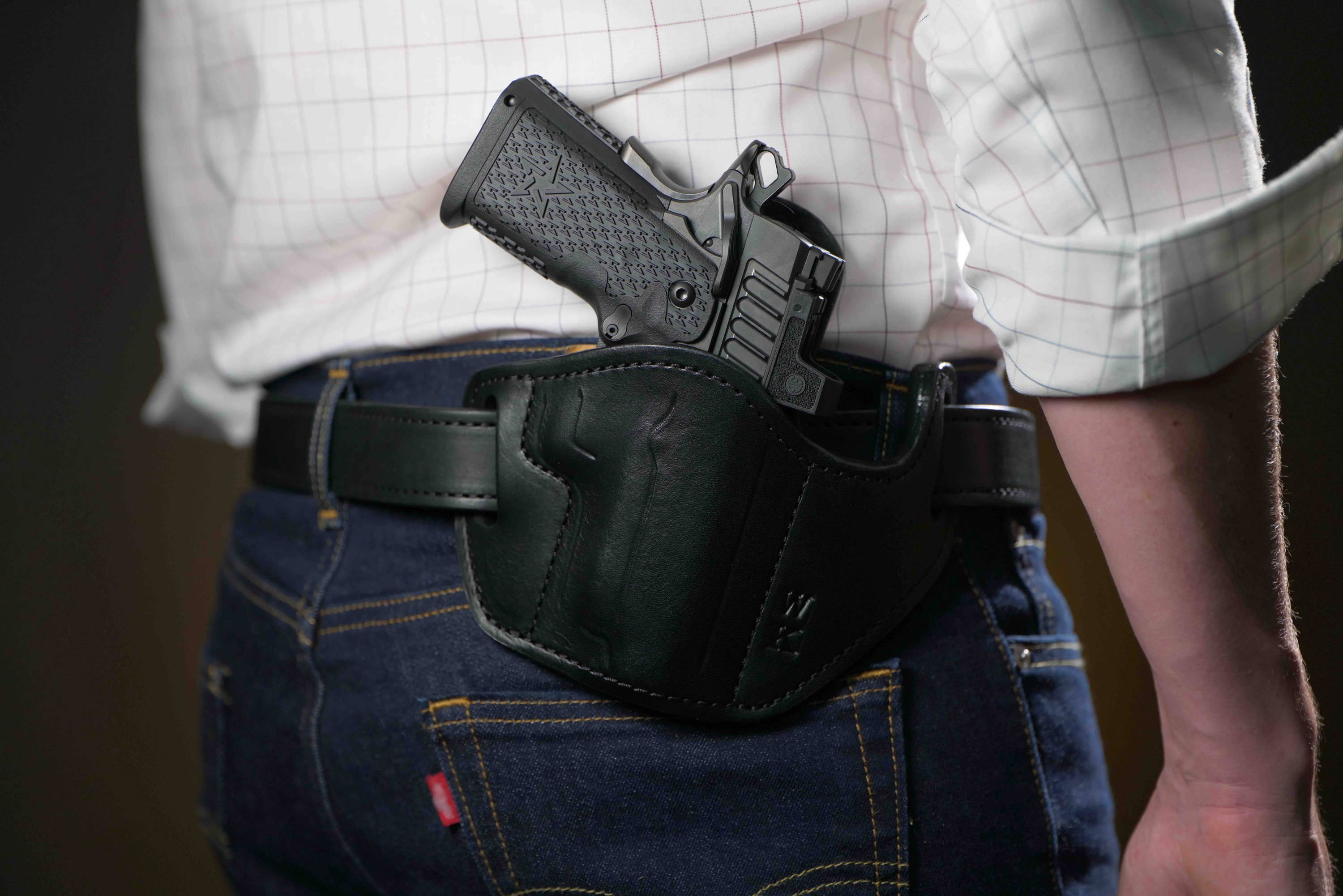Red dot sight holster