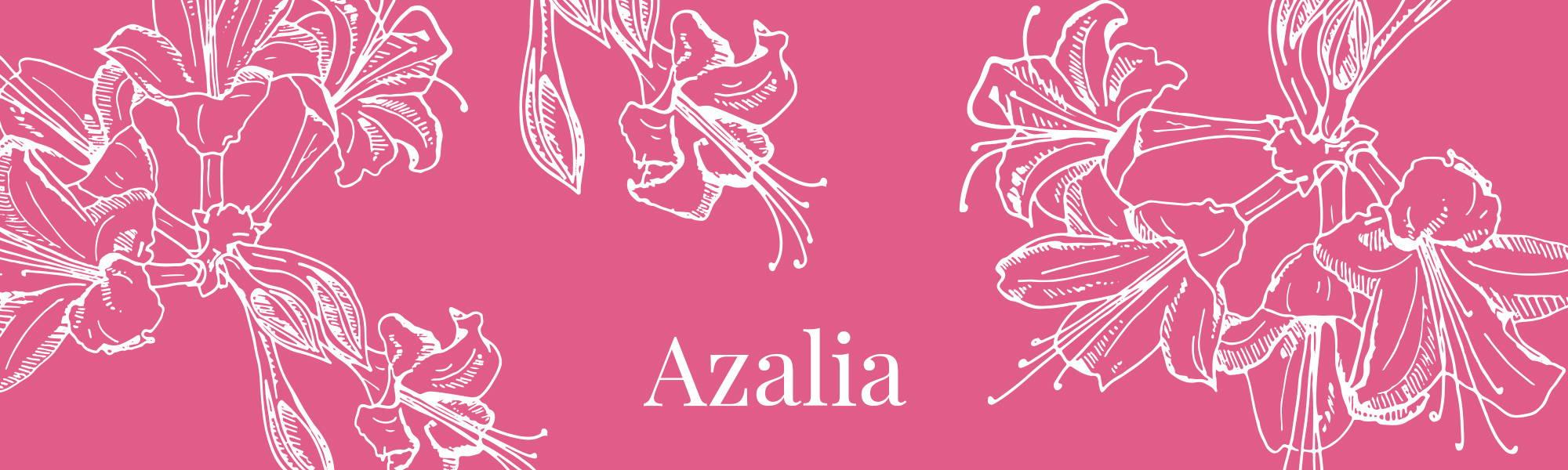 Image de la gamme Azalia de la collection Femme Dans un Jardin
