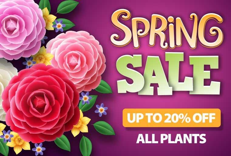 Plant Nursery Garden Center Plantingtree Com