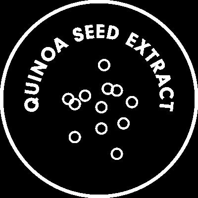 quinoa seed extract icon