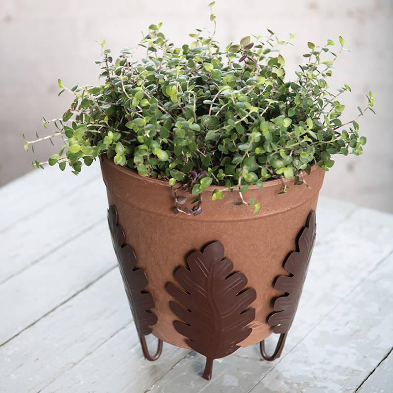 Botanical plant stand