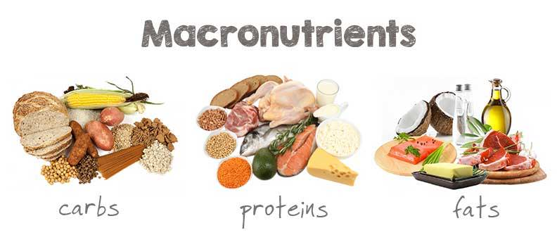 macronutrients keto flu