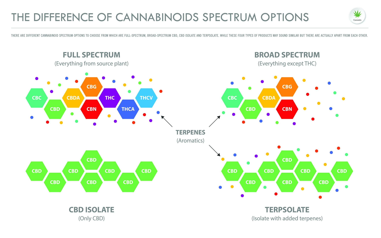 Cannabinoid Spectrum Options - Full Spectrum vs. Broad Spectrum CBD