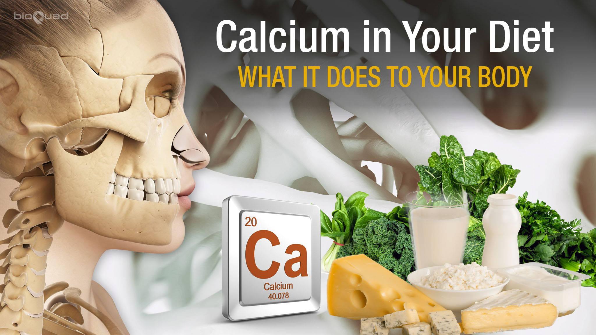 Calcium in Your Diet