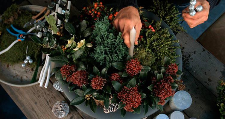 Gestalten Sie eine Weihnachtsatmosphäre in Ihrem Garten