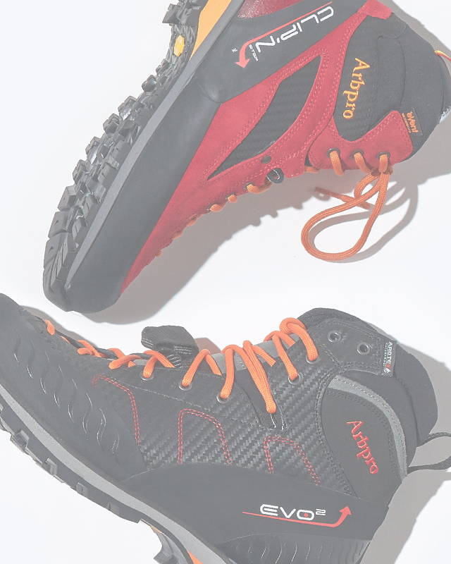 image of Arbpro EVO2 and Clip N Step Boots