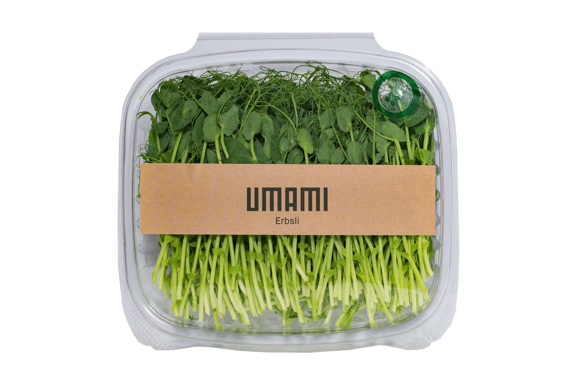 UMAMI Erbsen Microgreens.  Reich an Nährstoffen.