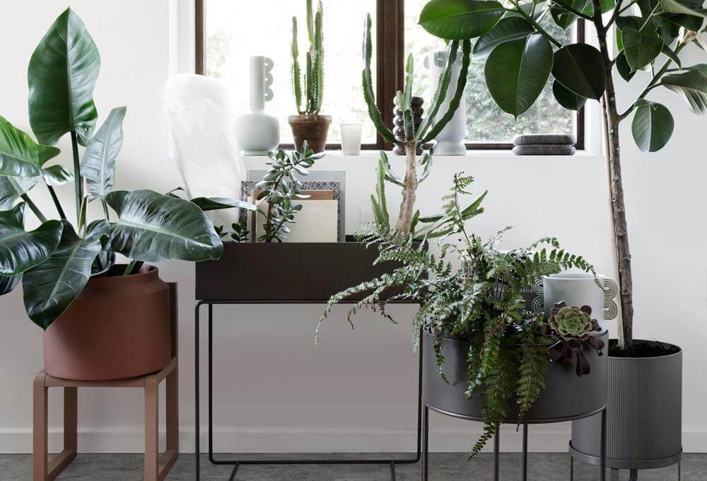 Easy ways to create an eco friendly home