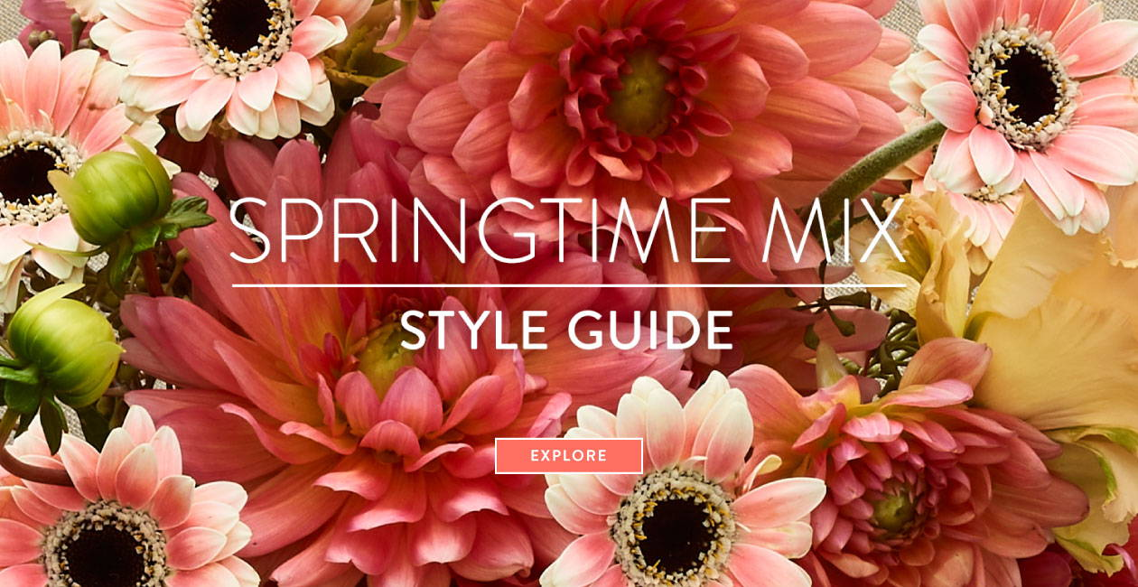 Springtime Mix Style Guide