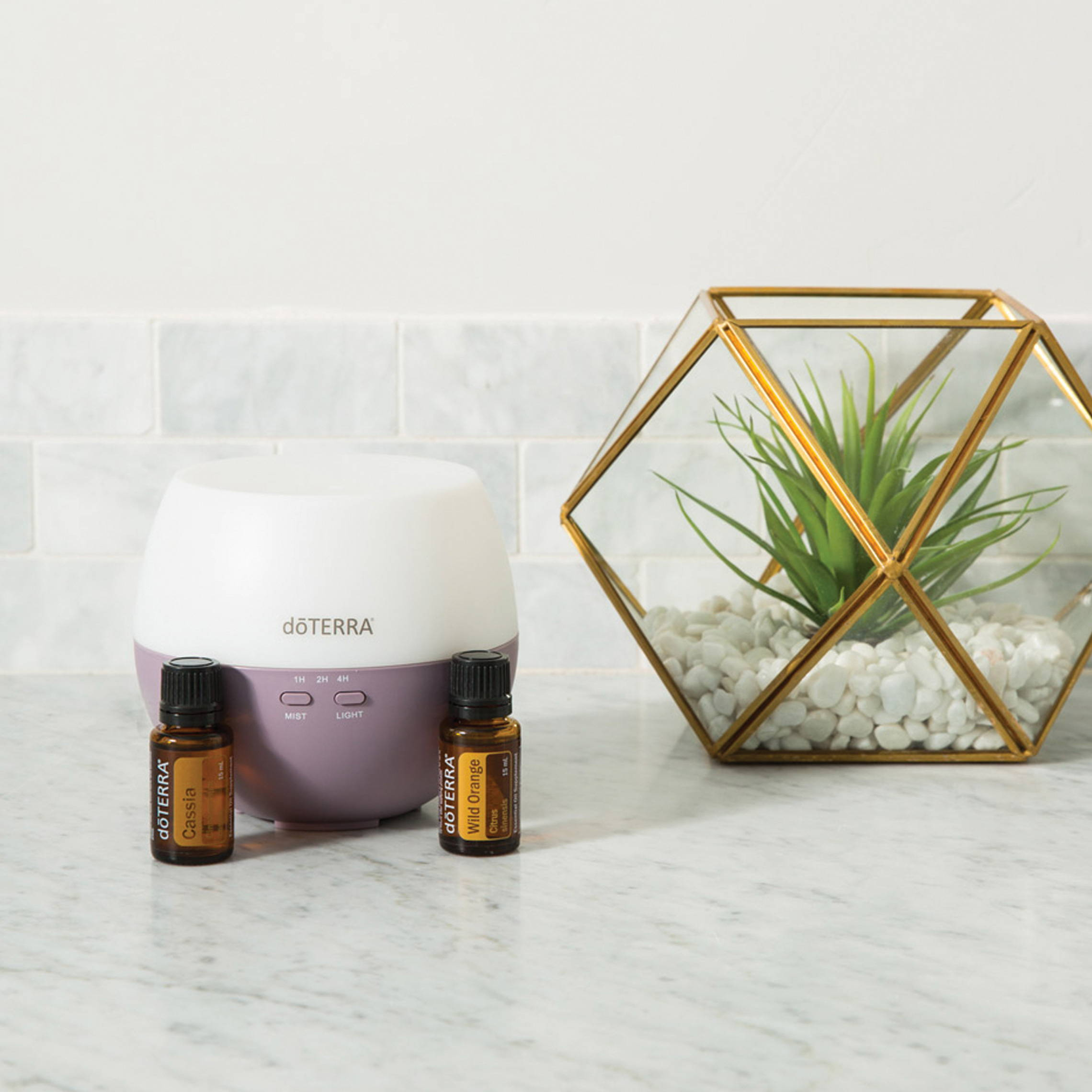 Click Here To Check Out doTerra Diffusers