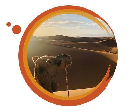 Travelbay Morocco Tours - Customer Review