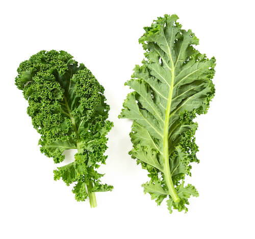 Codeage Kale Ketogenic Diet