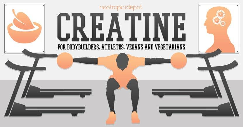 Creatine As A Nootropic