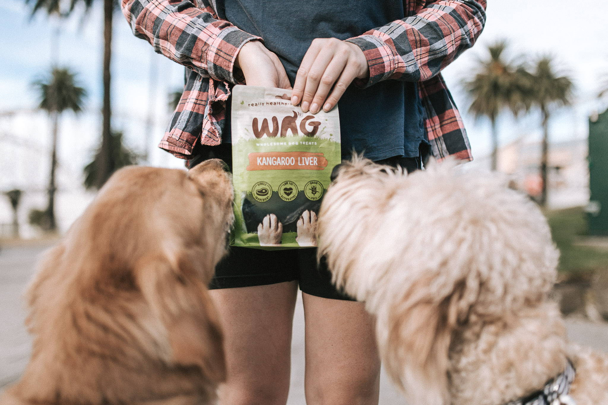 WAG natural air dried dog treats singapore at pawpy kisses pet shop
