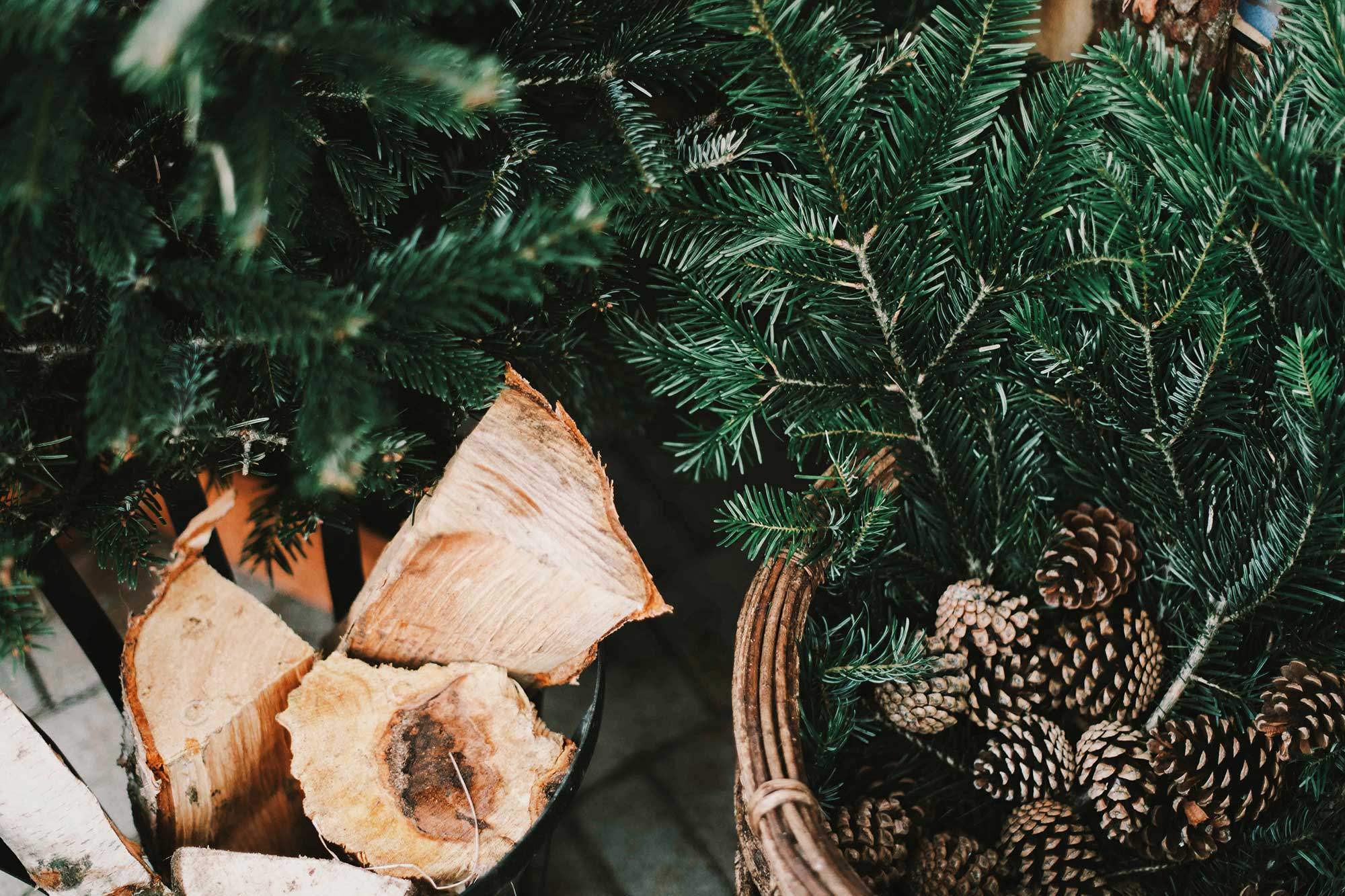 cut wood, acorns and fir branches in baskets