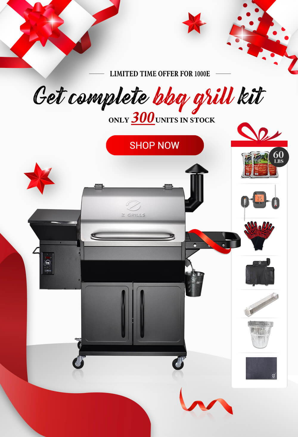 Z Grills 1000E Falsh Sale