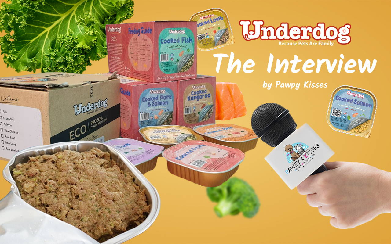Interview with Underdog Fresh Dog Food by Pawpy Kisses.