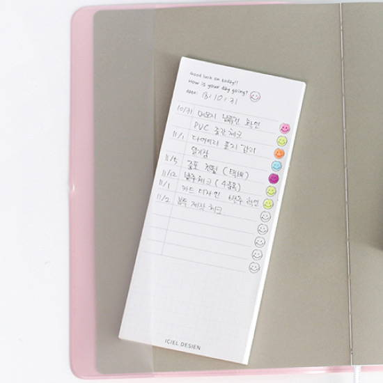 Pocket - ICIEL 2020 Recording today dated weekly diary planner