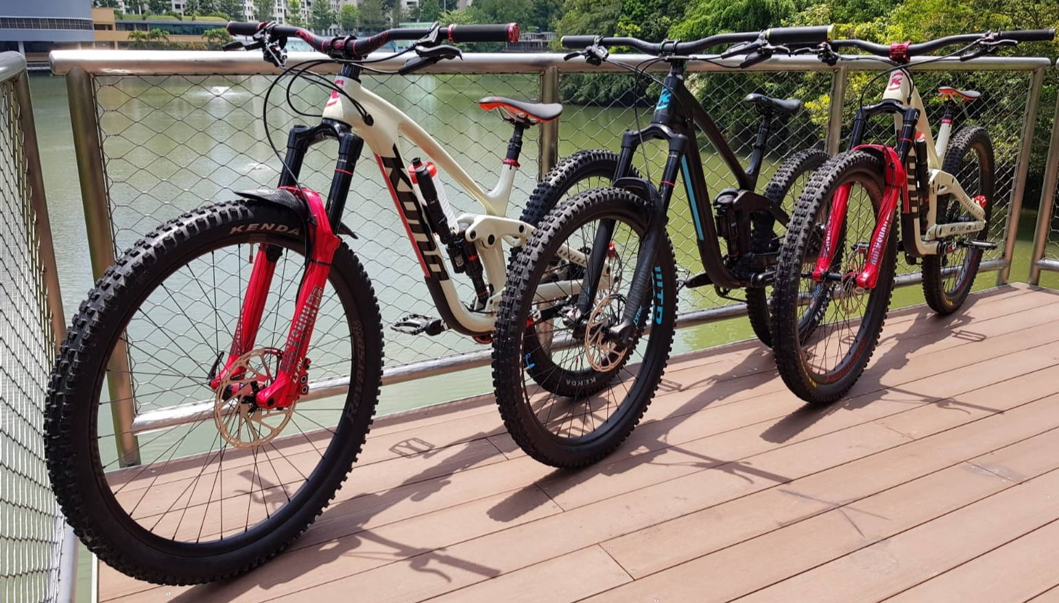 Mountain Bike Singapore - Buy MTBs in Singapore Online