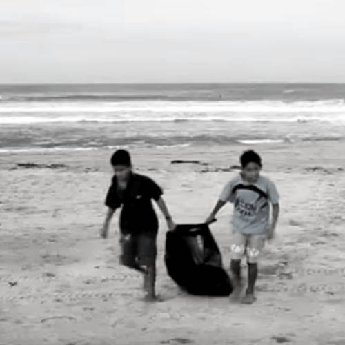 Why Beach Clean-Ups Are Important
