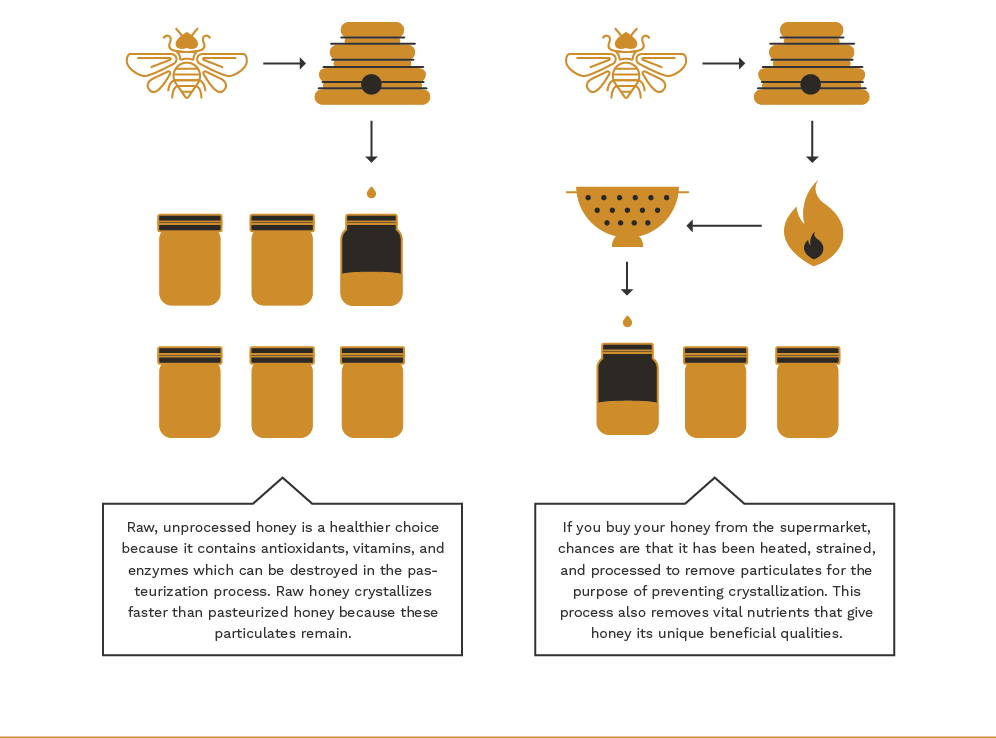 Infographic on honey pasteurization.