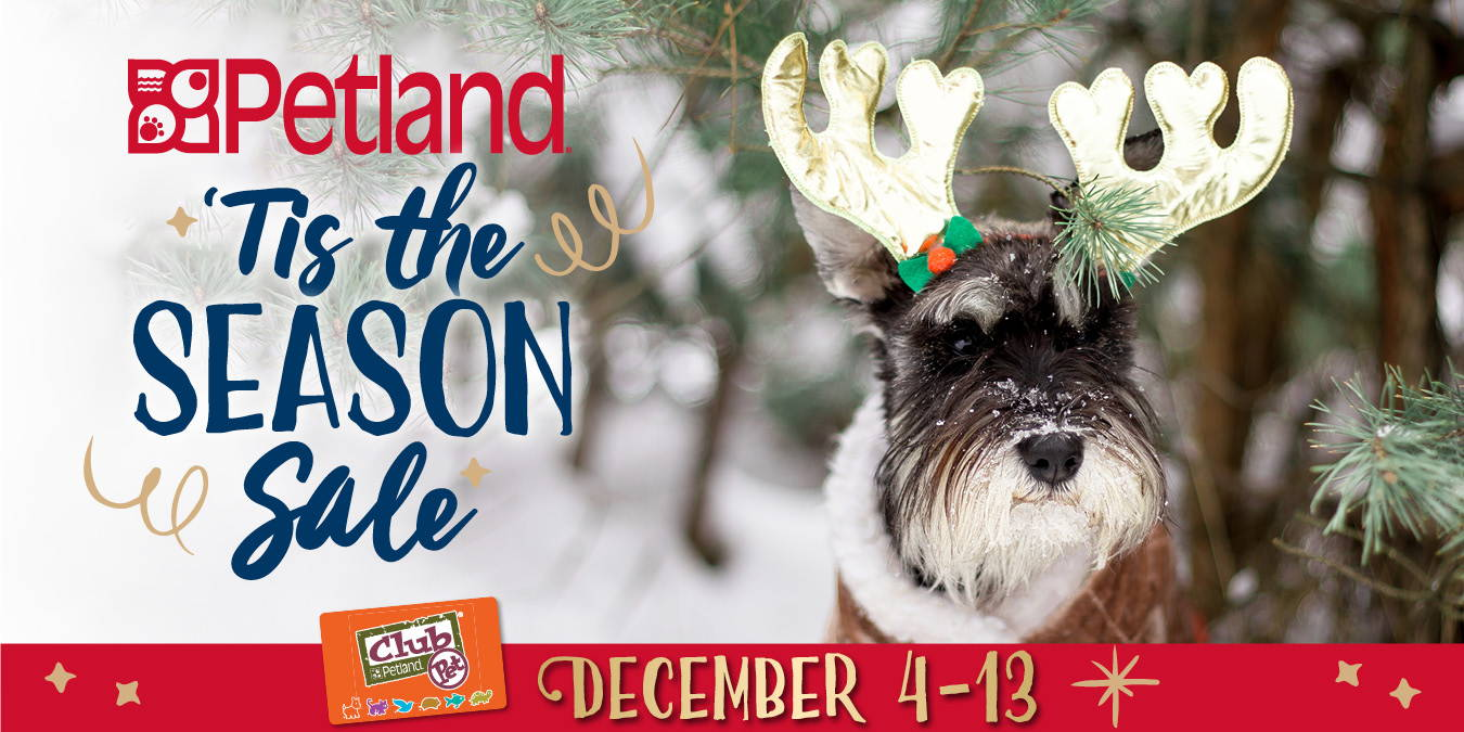 'Tis the Season Sale - Online from December 4 to 13, 2020.