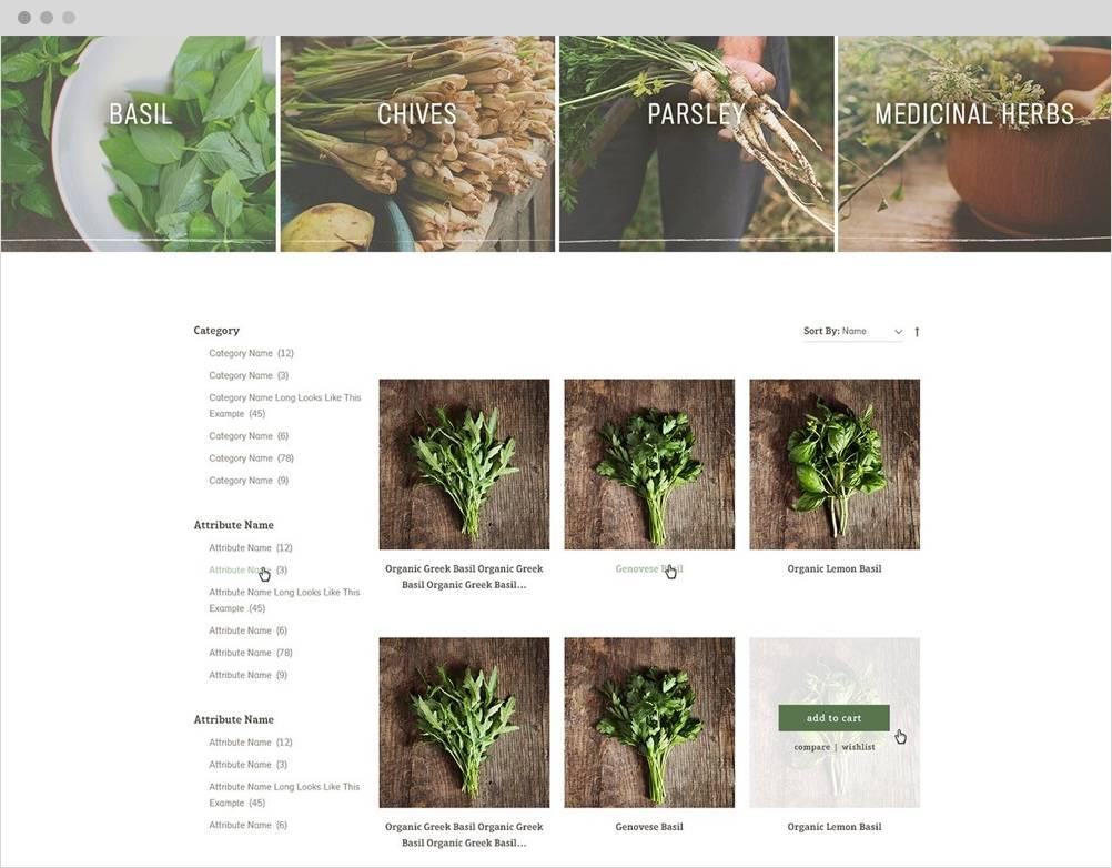 High Mowing Organic Seeds The Challenge 3 B2B Magento