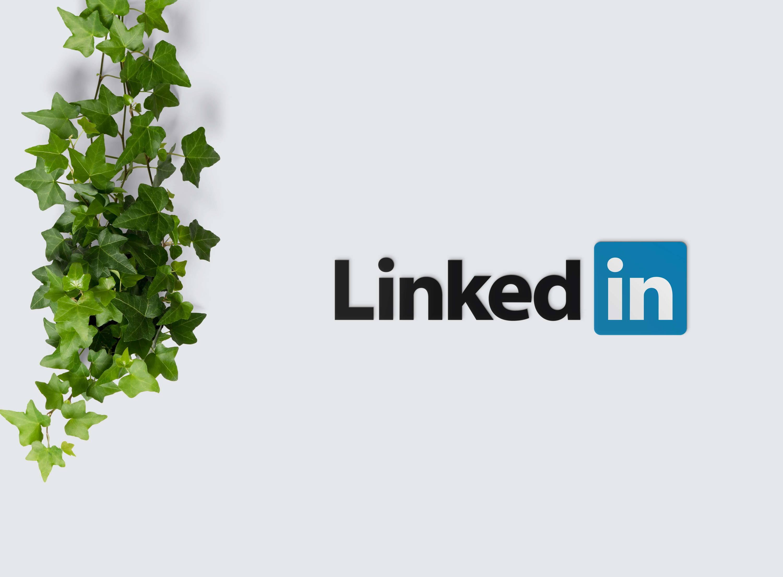 15 Superb LinkedIn Summary Examples  +Writing Guide – CV Nation