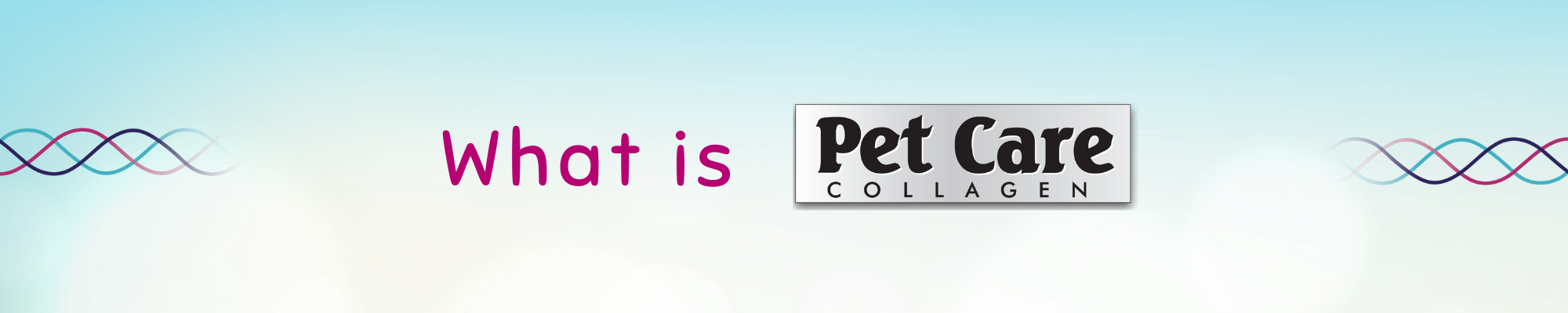 What is Pet care
