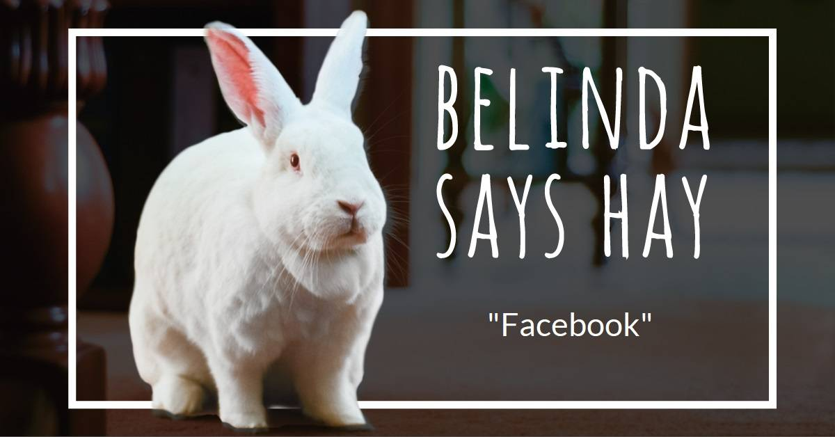 Belinda struggles with Facebook