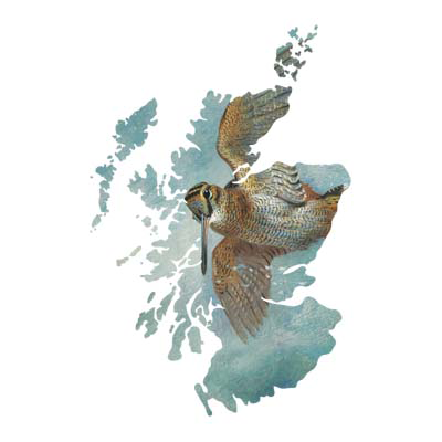 Artists from Scotland