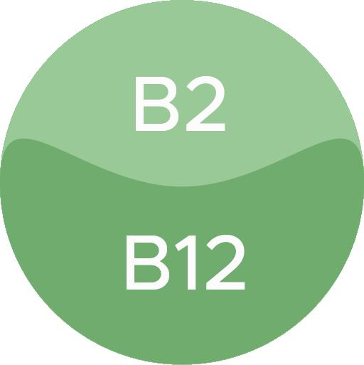 B Vitamins Icon
