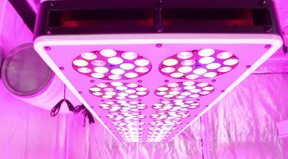 LED Grow Light for Indoor Gardening